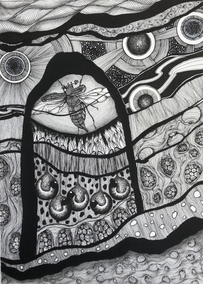 """'Ascend"""" Drawing"""
